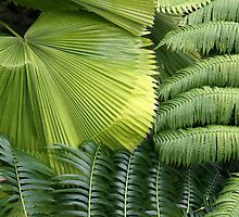 Abstract of Tropic Green by coffeebean