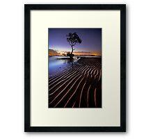 Everyones Tree Framed Print