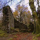 Dartmoor: Leather Tor Farm Ruins by Rob Parsons