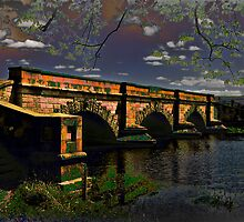Ross Bridge by Tony Steinberg