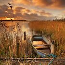 Old Boat, Strumpshaw Fen, Norfolk by Ian Flindt