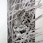 Leopard by Robert David Gellion