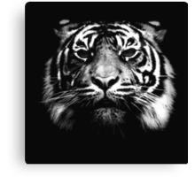 Illustrated Tiger  Canvas Print