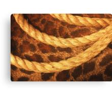 Three rope convergent Canvas Print