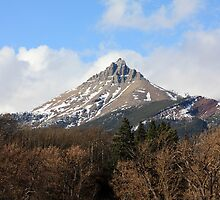 Mount Galwey by Alyce Taylor
