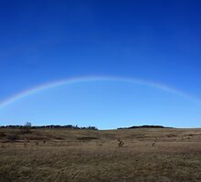 Perfect Rainbow by Alyce Taylor