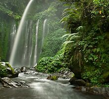 Tiu Kelep waterfall  by Stephen Colquitt