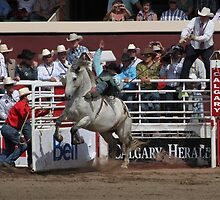 Calgary Stampede 2009, #73, Canada. by Felicity McLeod