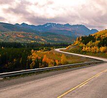Alaska Highway by Gary Paakkonen