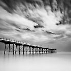 Saltburn Passing by Doug Chinnery