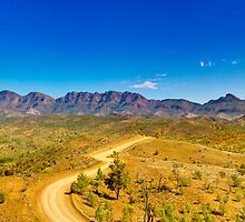 South Australia - Flinders Ranges - Brachina Gorge drive 11 by Geoffrey Thomas