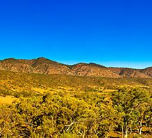 South Australia - Flinders Ranges - Brachina Gorge drive 14 by Geoffrey Thomas