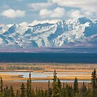 Susitna River Valley, Alaska by Bryan Minnear