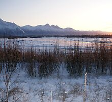 Sundown Alpenglow/Matanuska River by Jackie Muncy