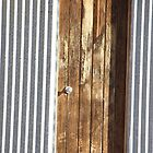 Shed Door by Maryanne Lawrence