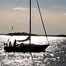 Harbor Islands, Boston by Laura Dandaneau