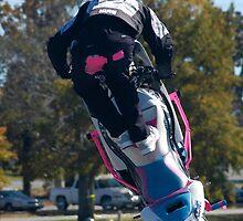 Yo Face Stunt Show by Ryan  Lucas