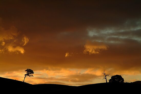 Pyrenees Sunset by Joe Mortelliti