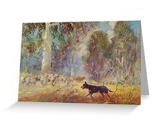 Fred the Kelpie - Driving the Flock Greeting Card