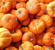 Tiny Pumpkins by Lillium