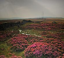Rombalds Moor 5 by WatscapePhoto