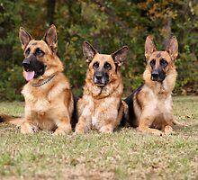Family Portrait by Sandy Keeton