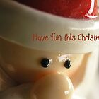 Christmas - Have Fun This Christmas by Deanna Roberts Think in Pictures