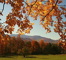 An Autumn's View by Terri~Lynn Bealle