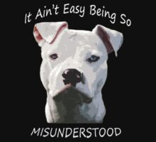 Misunderstood by Zdogs