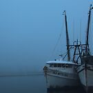 Misty morning  by kathy s gillentine