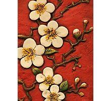 Chinese Blossom Photographic Print