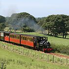 Little Train Steaming on the Talyllyn Railway by Andrew Simner