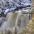 Blackwater Falls Winter by joerossbach