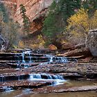 Cascades of the Left Fork in Zion by Alan C Williams