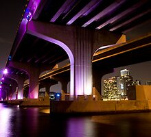 Rickenbacker Causeway - Miami Florida by Rachelle Vance