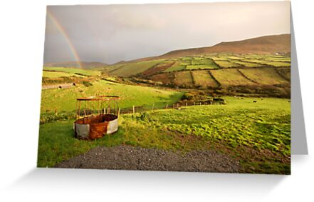 A pot of gold in the fields of Kerry by Donncha O Caoimh