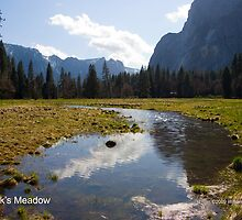 Cook's Meadow by William Hackett