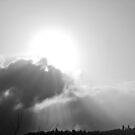 B/W Sunrays by Jessica Hardin