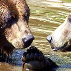 Grizzlies in a Quiet Moment by buttonovski