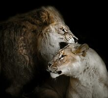 Passion by Natalie Manuel