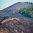 Slopes of Mount Etna, Sicily by Caimin Jones