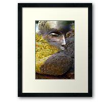 Autumn (from my exhibition) Framed Print