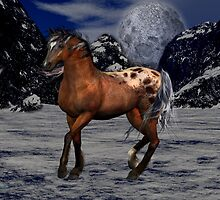 Wild And Free .. a wild horse of the mountains by LoneAngel