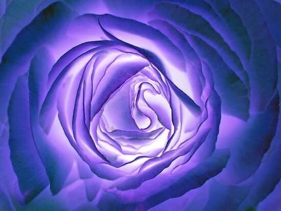 Blue lighted Rose by Greta Schnall