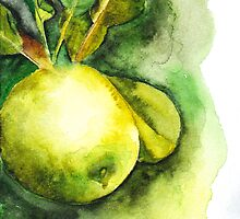 Green Apple by Laurenet