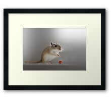 And it's hello from me! Framed Print