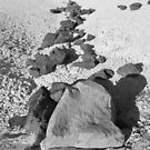 Rock walkway by Lacy O.