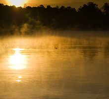 Dawn at Lake Woodlands 1,The Woodlands TX USA by GJKImages
