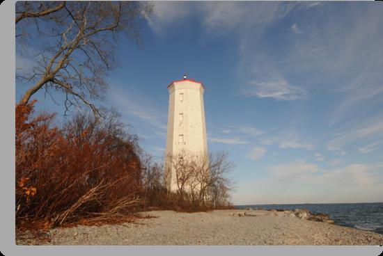 The Presqui'le Lighthouse by Lynda   McDonald