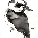 Kookaburra by Acey Thompson